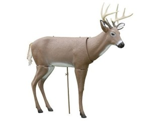 Whitetail Decoy