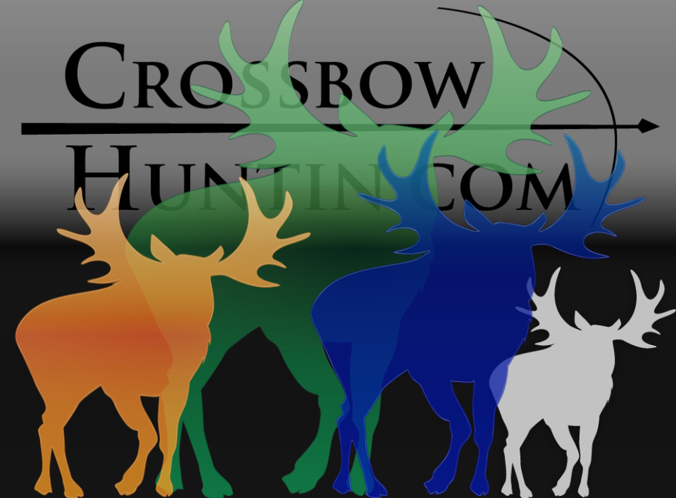 Crossbow-Moose-Hunting-960x707.png