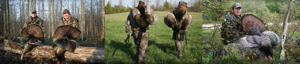 Wingfeather Outfitter Turkey